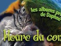 L'heure du conte de Daphné