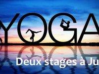 Yoga : découverte ou perfectionnement