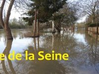 Infos crue de la Seine